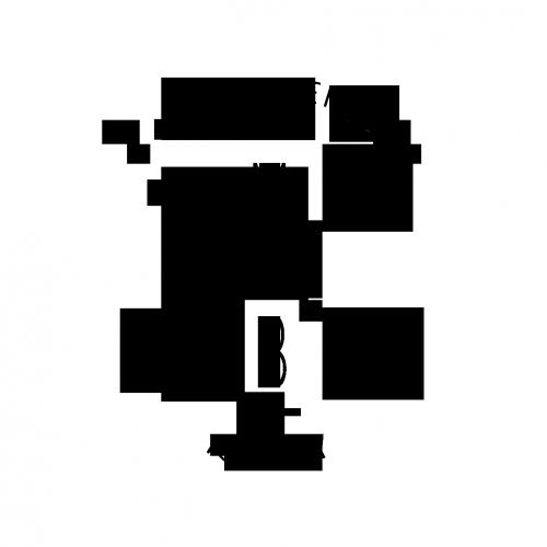 Confidence-Logo