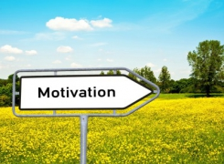 Motivate to Invograte