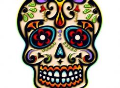 trendy fear and skulls